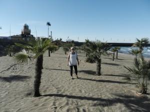 Tropical beach i Hbg