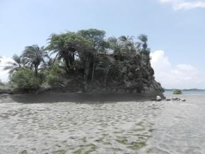 Lien tropisk o mitt i Bahia Salvador