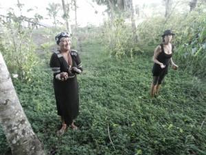Blanca och Lena plockar avacados