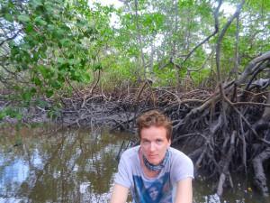 Tom och jag pa aventyr i mangrovetrasken