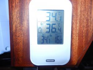 Dagen efter Montevideo hade vi jättevarmt. I solen steks man ganska fort.