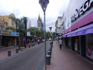 Shoppinggatan i San Fernando