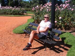 Min ros i Rosenträdgården