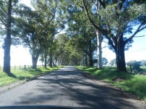 Fin vag i Uruguay