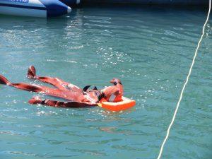 Modris badar