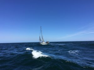 Fortune Light på väg ner i Sydatlanten