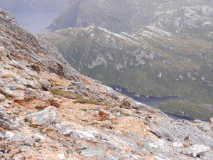 Utsikt over batarna vid bergsbestigning i Isla de los Estados