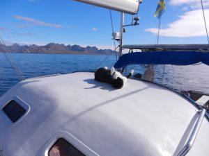 Pa vag mot Kap Horn. Katten helt tokig nar solen varmer. Hon ligger och myser pa hardtoppen