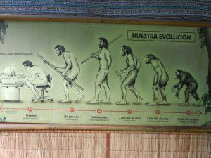 Chilenska synen på evolutionen
