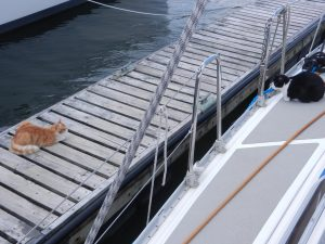 Sheena vaktar sin båt mot lille herr Fish.