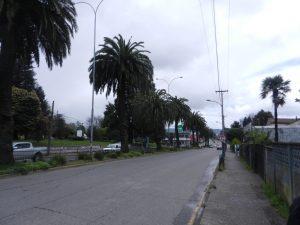 Östra infartsvägen till Valdivia.
