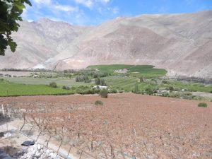 Pisco Elqui dalen